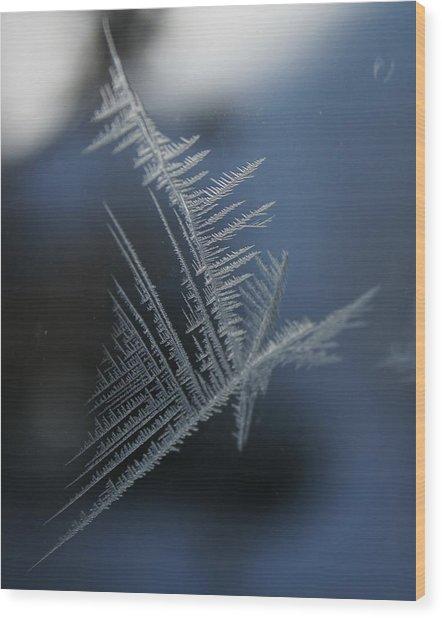 Natures Crystal Wood Print