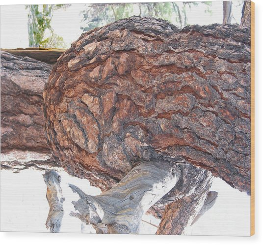 Nature's Natural Abstract Art Wood Print by Merton Allen
