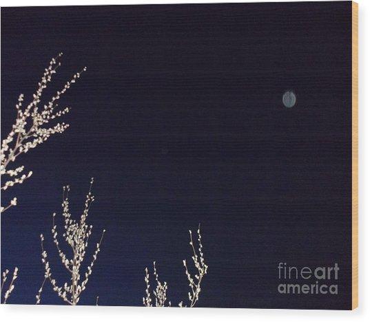 Nature's Watchful Eye Wood Print
