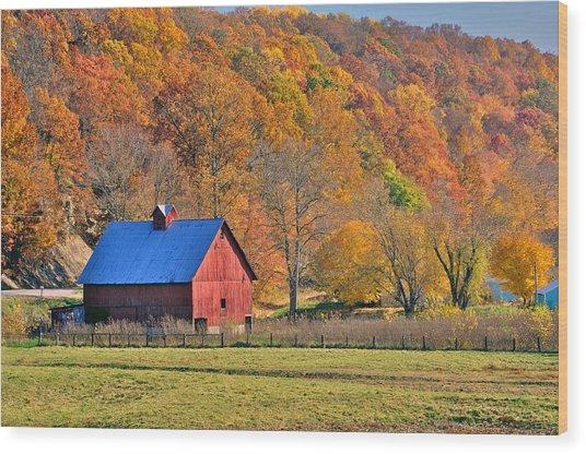 Near Bedford Indiana Wood Print by Marsha Williamson Mohr
