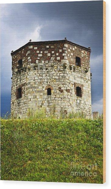 Nebojsa Tower In Belgrade Wood Print