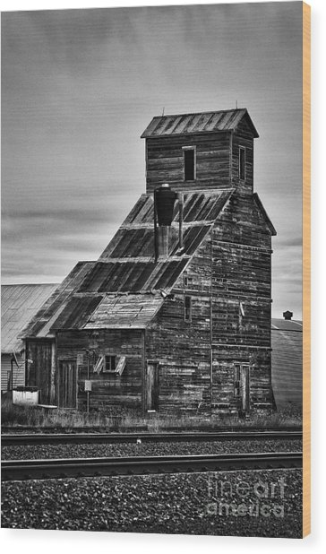 Nebraska Grain Elevator Wood Print by David Waldrop