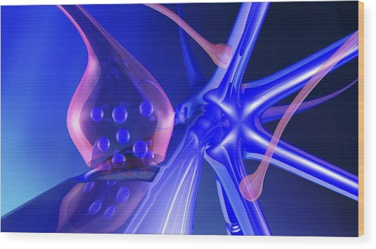 Nerve Synapse Wood Print by Pasieka