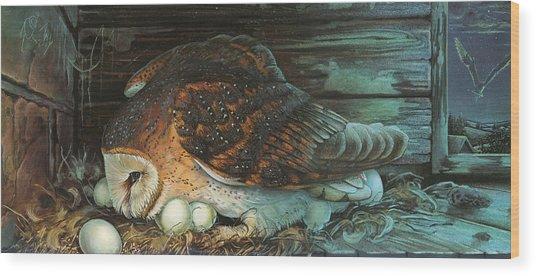 Nesting Owl Wood Print