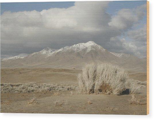 Nevada Scene Wood Print