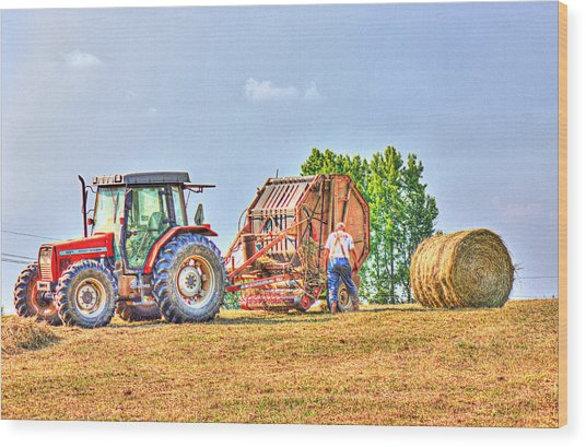 New Bale Wood Print by Barry Jones