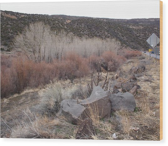 New Mexico Lanscape Wood Print