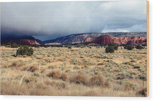 New Mexico Panorama Wood Print