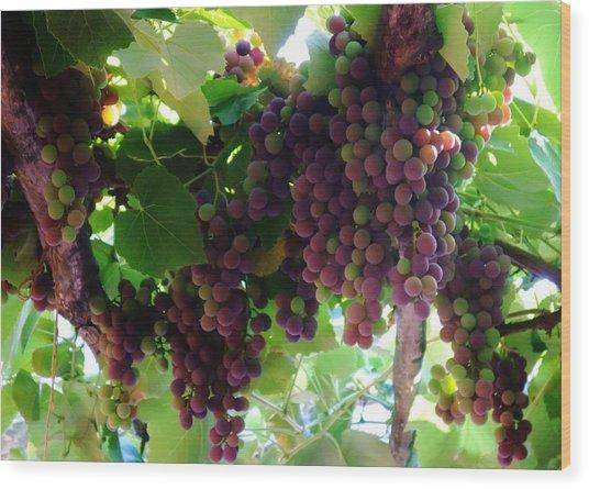 New Wine Wood Print by Alison Richardson-Douglas