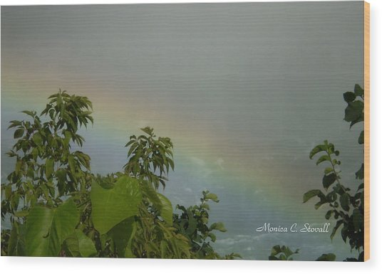 Niagara Falls Collection - Rainbow - Canadian View Wood Print