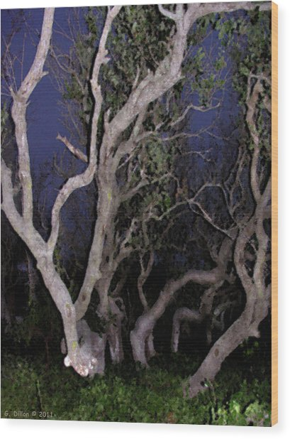 Night Branches Wood Print