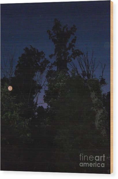 Night Welcomes Day Wood Print
