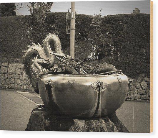 Nikko Fountain Wood Print
