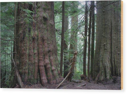 Nobility Wood Print