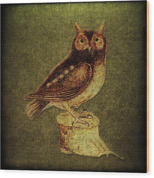 Noctua Aurita Minor Wood Print by Li   van Saathoff