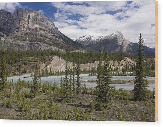 North Saskatchewan River Valley Wood Print by Bob Gibbons
