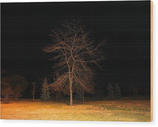 November Night Wood Print
