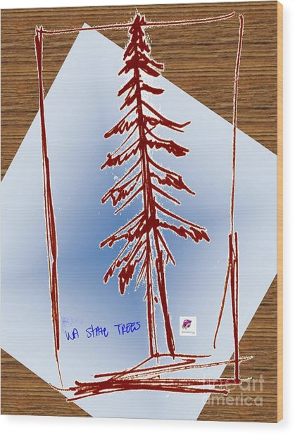 Nw Evergreen Tree Wood Print