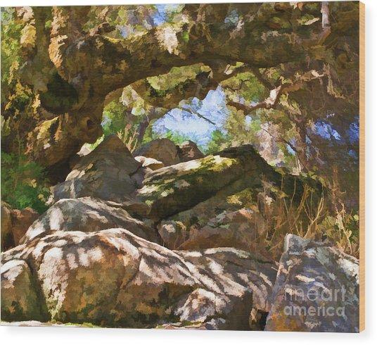 Oak Canopy Wood Print
