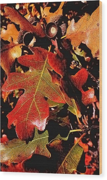 Oak Colors Wood Print by Darryl Gallegos