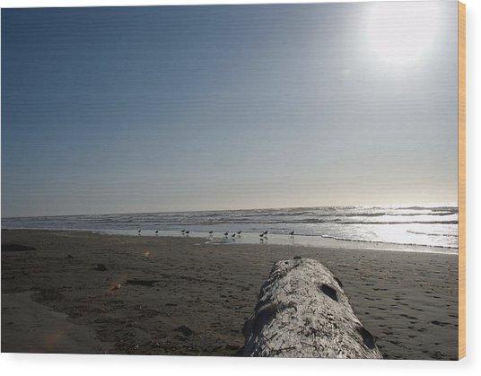 Ocean At Peace Wood Print