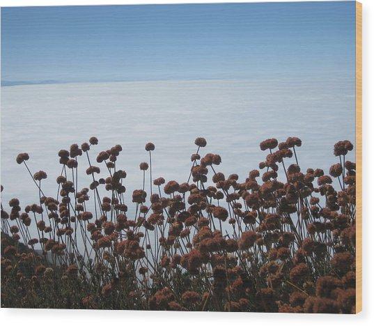 Ocean Of Clouds Wood Print by Diana Poe