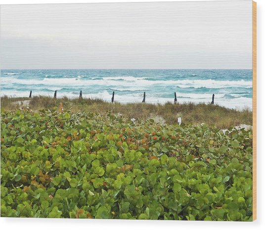 Oceanside Wood Print