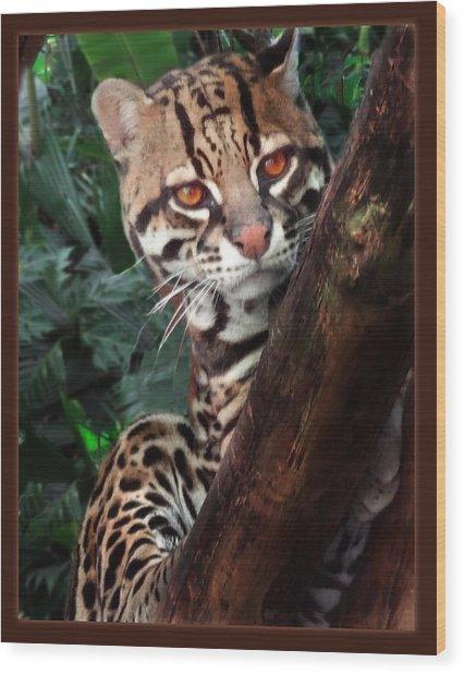 Ocelot Lookout Wood Print