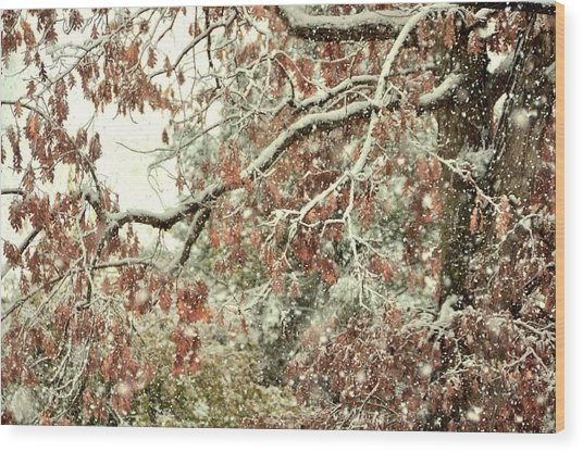 October Snowstorm Wood Print by JAMART Photography
