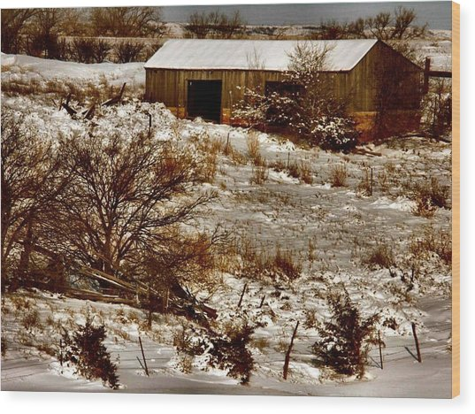 Ohhhh Its Cold Wood Print by Lynne and Don Wright
