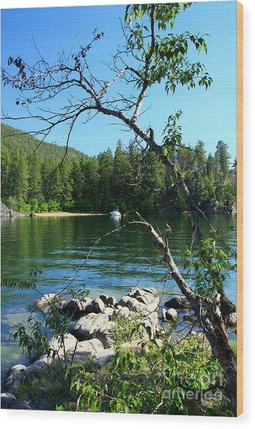 Okanagan Seclusion Wood Print by Frank Townsley
