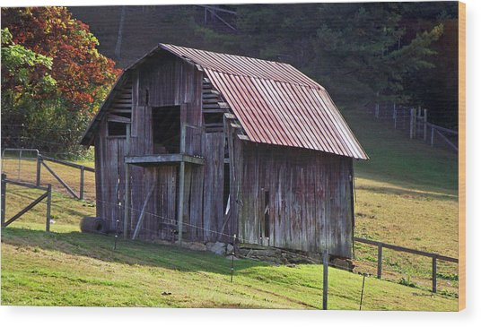 Old Barn In Etowah Wood Print