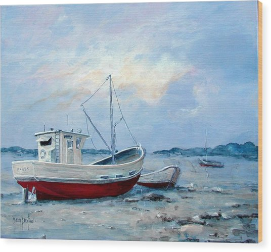 Old Boats On Shore Wood Print