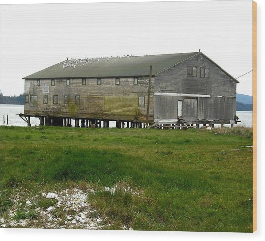 Old Cannery Oysterville Wood Print