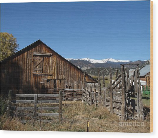 Old Colorado Barn Wood Print by Donna Parlow