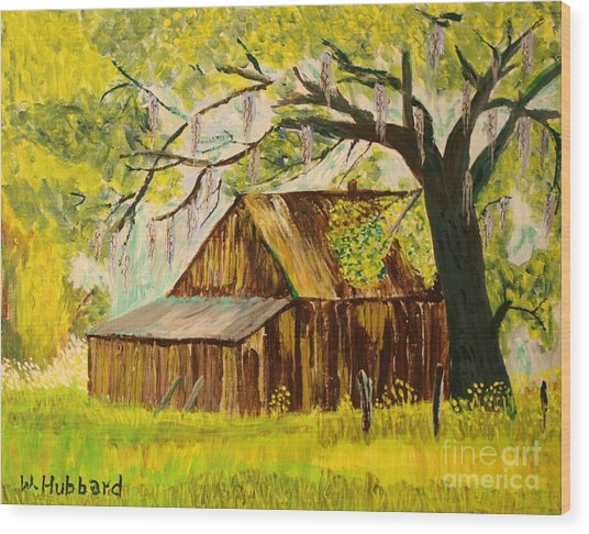 Old Florida Farm Shed Wood Print