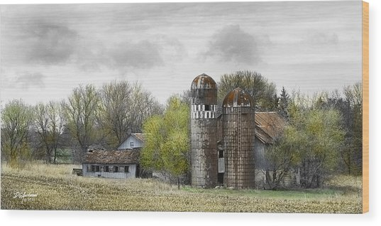 Old Minnesota Farmstead Wood Print by Don Anderson