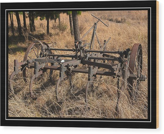 Old Plough Wood Print by Miguel Capelo