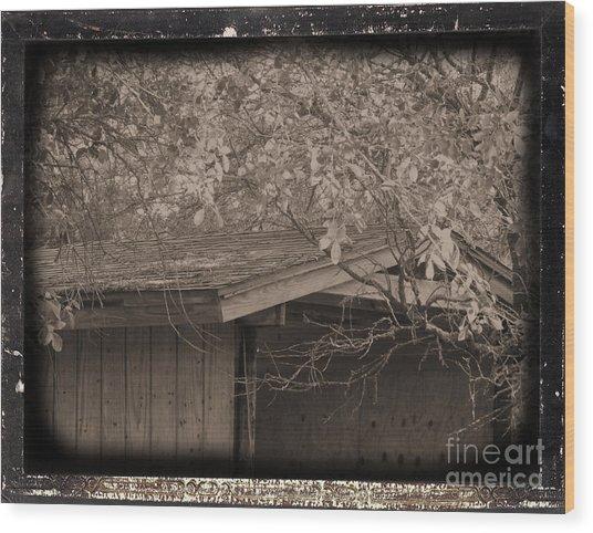 Oldshed Wood Print