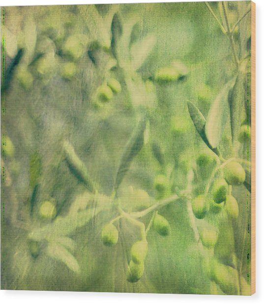Olive And Leaf Wood Print