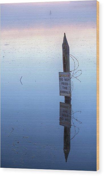 Ominous II Wood Print by JC Findley