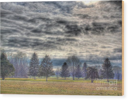 Ominous Skies At The Park Wood Print