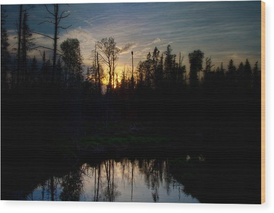 On A Summers Night Wood Print by Gary Smith