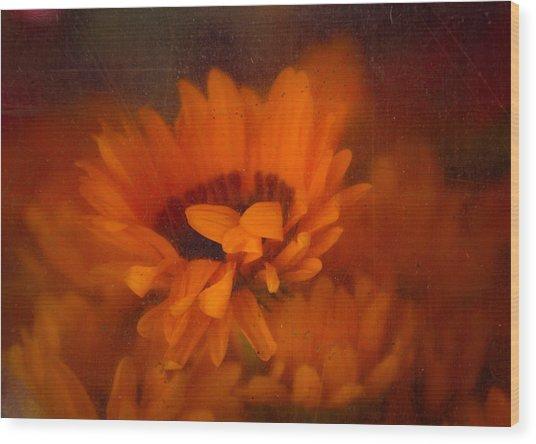 Once Radiant Wood Print