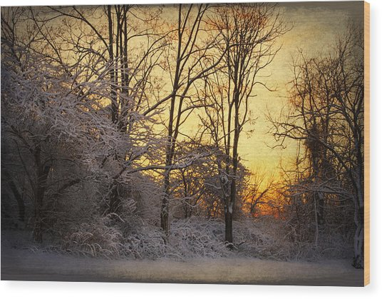 Once Upon A Winter Morning.. Wood Print