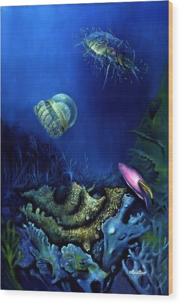 One Fish Two Jelly Fish Wood Print