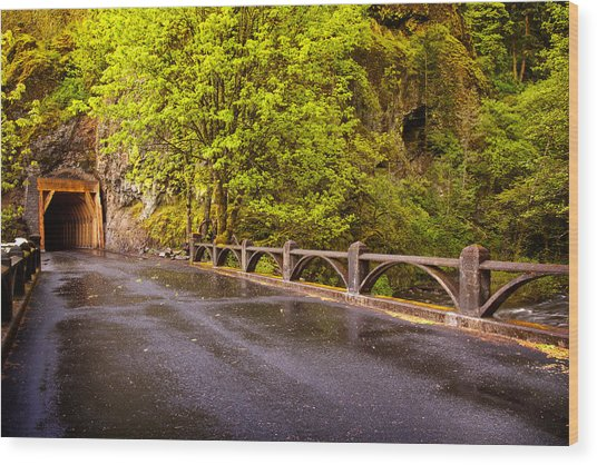 Oneonta Tunnel Wood Print