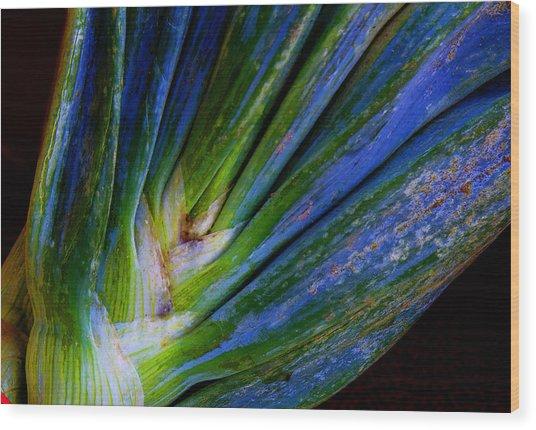 Onions Wood Print by Michael Friedman