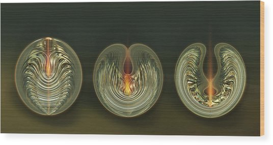 Opening Wood Print by Li   van Saathoff