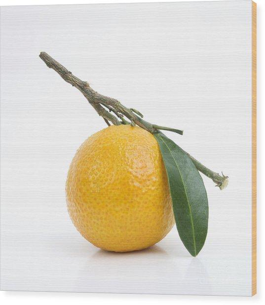 Orange Satsuma Wood Print